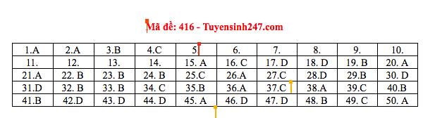 Đáp án thi môn Tiếng Anh THPT quốc gia 2019 (tất cả mã đề) - Ảnh 2.