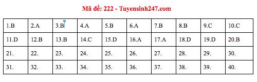 Đáp án đề thi môn Vật lý THPT quốc gia 2019 (tất cả 24 mã đề) - Ảnh 1.